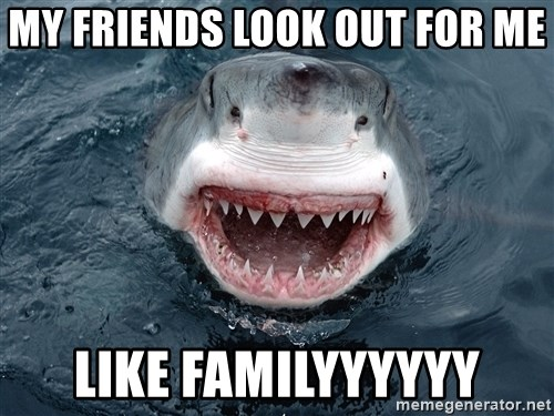 Insanity Shark - My friends look out for me like familyyyyyy