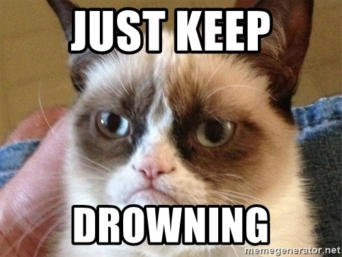 Angry Cat Meme - Just Keep drowning
