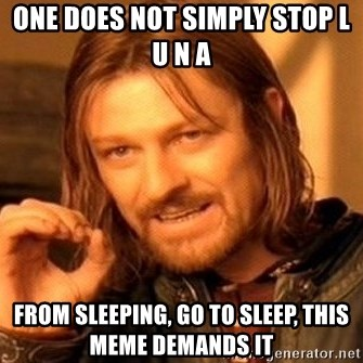 One Does Not Simply - One does not simply stop l u n a From sleeping, go to sleep, this meme demands it