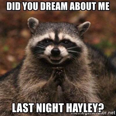 evil raccoon - Did you dream about me last night hayley?
