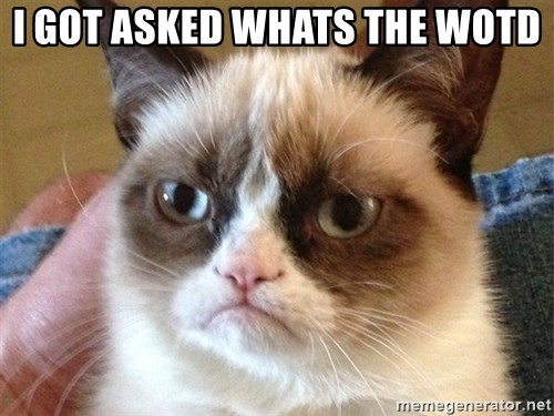 Angry Cat Meme - I got asked whats the wotd