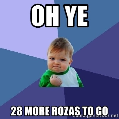 Success Kid - oh ye 28 more rozas to go