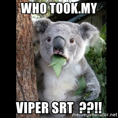 Koala can't believe it - who took.my VIPER SRT  ??!!