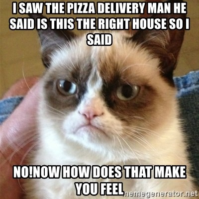 Grumpy Cat  - I saw the pizza delivery man he said is this the right house so I said No!now how does that make you feel