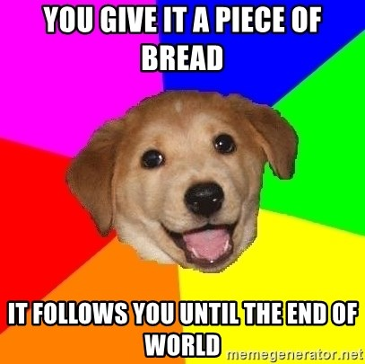 Advice Dog - you give it a piece of bread it follows you until the end of world