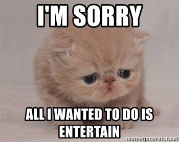 Super Sad Cat - I'm sorry all i wanted to do is entertain