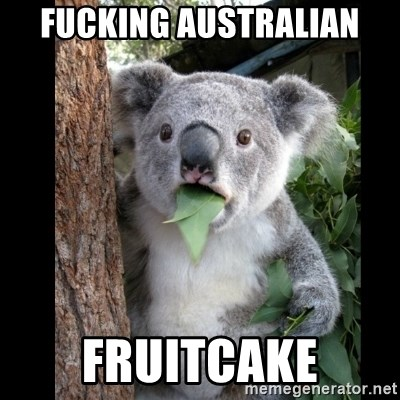 Koala can't believe it - Fucking australian fruitcake