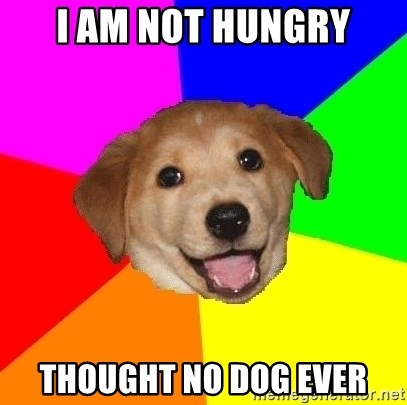 Advice Dog - I am not hungry thought no dog ever