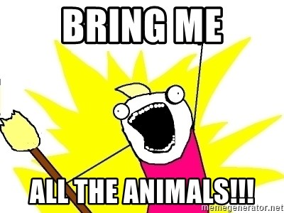 X ALL THE THINGS - Bring me All the animals!!!