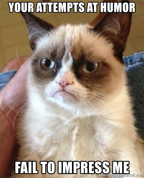 Grumpy Cat Face - Your attempts at humor fail to impress me