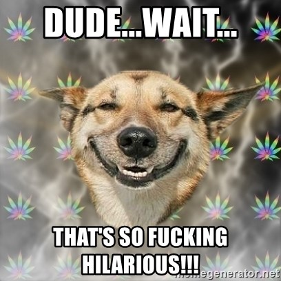 Stoner Dog - DUDE...WAIT... THAT'S SO FUCKING HILARIOUS!!!