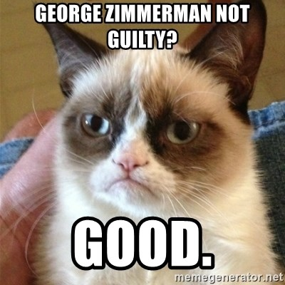 Grumpy Cat  - george zimmerman not guilty? good.