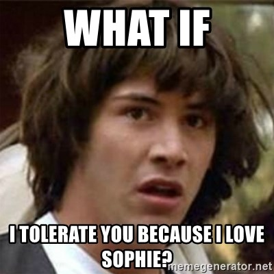 what if meme - what if i tolerate you because i love sophie?