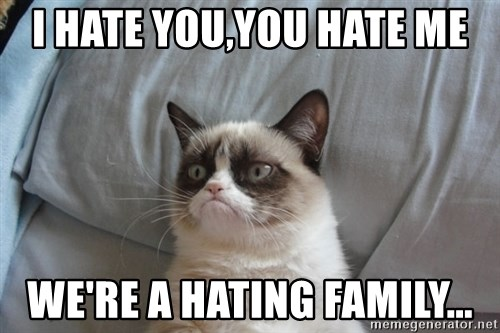 Grumpy cat good - I HATE YOU,YOU HATE ME WE'RE A HATING FAMILY...