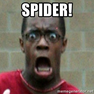 SCARED BLACK MAN - SPIDER!