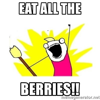 clean all the things blank template - eat all the berries!!