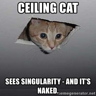 Ceiling cat - Ceiling cat Sees singularity - and it's naked.