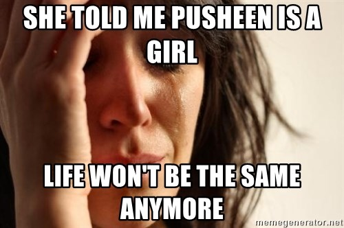 First World Problems - she told me pusheen is a girl life won't be the same anymore