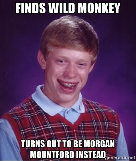 Bad Luck Brian - finds wild monkey turns out to be morgan mountford instead