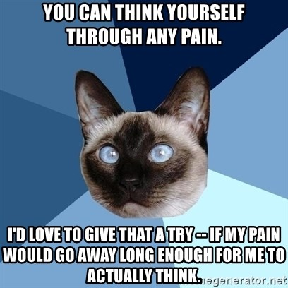 Chronic Illness Cat - You can think yourself through any pain. I'd love to give that a try -- if my pain would go away long enough for me to actually think.