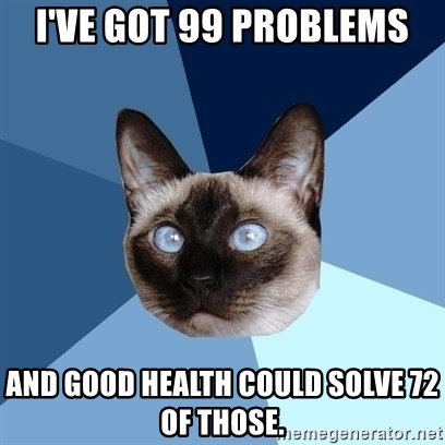 Chronic Illness Cat - I've got 99 problems and good health could solve 72 of those.