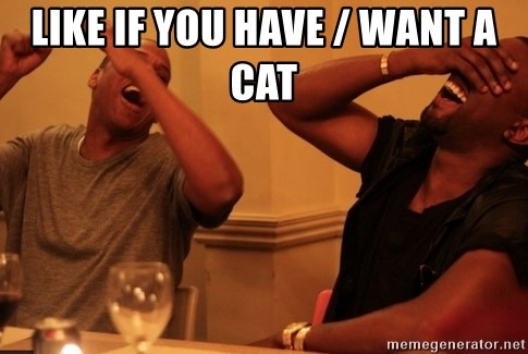 kanye west jay z laughing - LIKE IF YOU HAVE / WANT A CAT