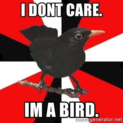 Socionic Bird - i dont care. im a bird.