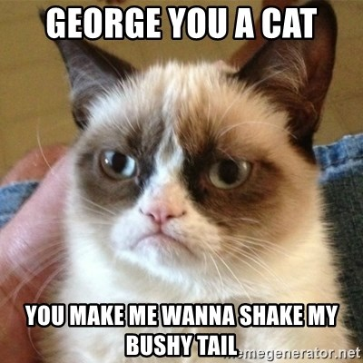 not funny cat - George you a cat You make me wanna shake my bushy tail