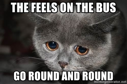 Sadcat - The feels on the bus Go round and round