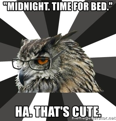 """ITCS Owl - """"Midnight. Time for bed."""" Ha. That's cute."""