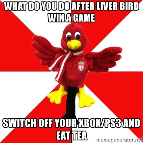 Liverpool Problems - what do you do after liver bird win a game switch off your xbox/ps3 and eat tea
