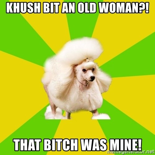 Pretentious Theatre Kid Poodle - Khush bit an old woman?! That bitch was mine!