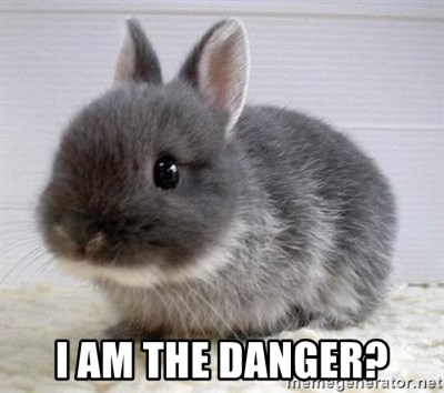 ADHD Bunny -  I am the danger?
