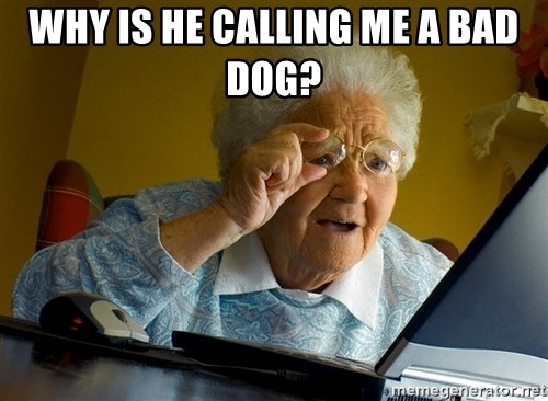 Internet Grandma Surprise - why is he calling me a bad dog?