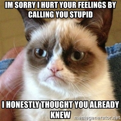 Grumpy Cat  - im sorry i hurt your feelings by calling you stupid i honestly thought you already knew