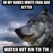 wolf banderson - Im my names White Fang and better  Watch out Rin Tin Tin