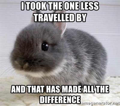 ADHD Bunny - i took the one less travelled by and that has made all the difference