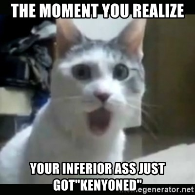 "Surprised Cat - The moment you realize your inferior ass just got""kenyoned"""