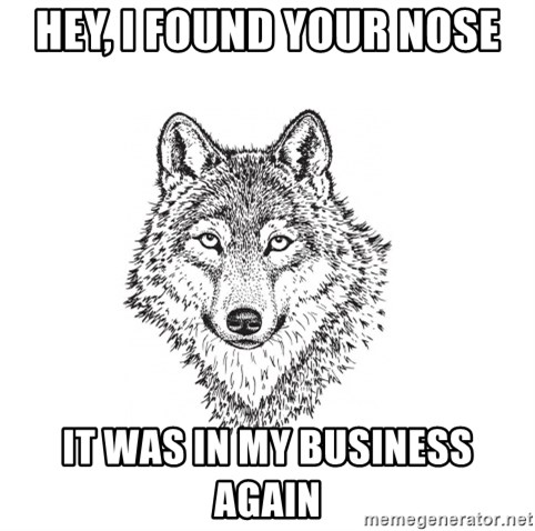 Sarcastic Wolf - hey, i found your nose it was in my business again