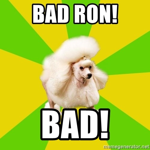 Pretentious Theatre Kid Poodle - Bad Ron! Bad!