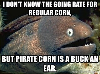 Bad Joke Eel v2.0 - I don't know the going rate for regular corn, but pirate corn is a buck an ear.