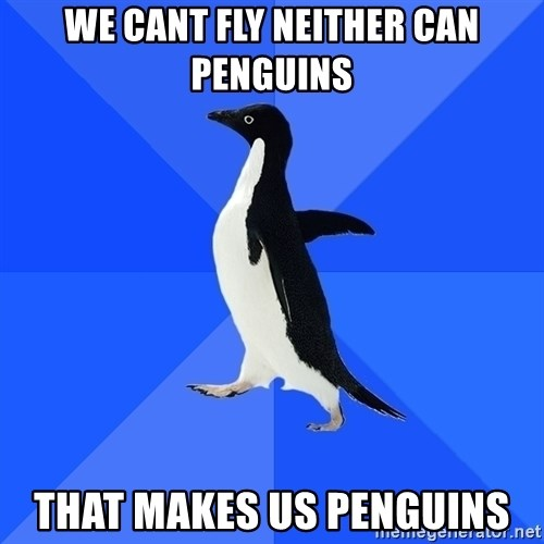 Socially Awkward Penguin - we cant fly neither can penguins that makes us penguins