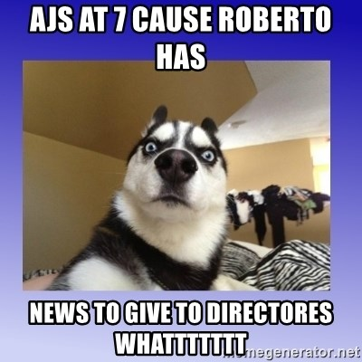 Dog Surprise - Ajs at 7 cause Roberto has  News to give to directores whattttttt