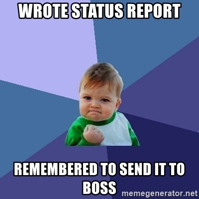 Success Kid - Wrote Status Report Remembered to send it to boss
