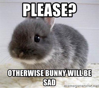ADHD Bunny - Please? Otherwise bunny will be sad