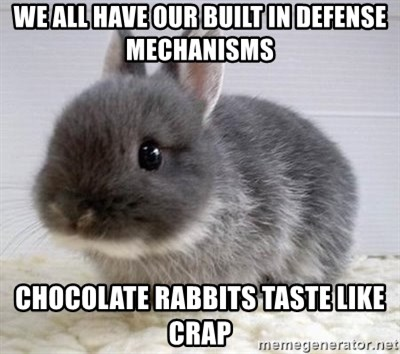 ADHD Bunny - we all have our built in defense mechanisms chocolate rabbits taste like crap