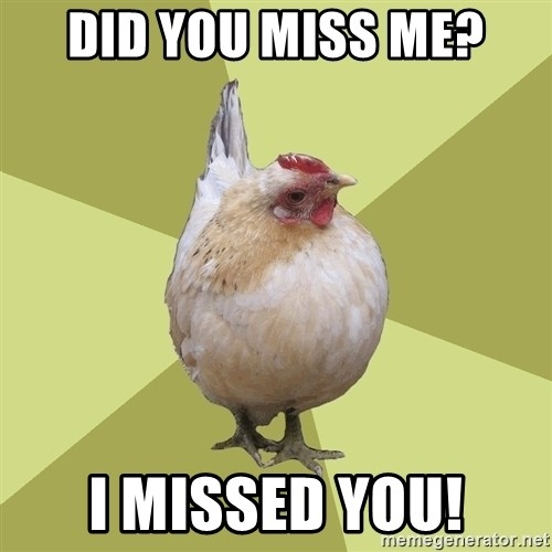 Uneducatedchicken - did you miss me? I missed you!