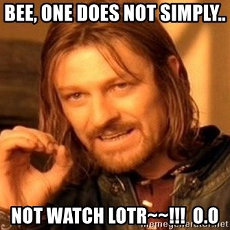 One Does Not Simply - Bee, one does not simply.. NOT WATCH LOTR~~!!!  O.o