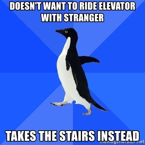 Socially Awkward Penguin - Doesn't want to ride elevator with stranger Takes the stairs instead