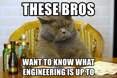 Poker Cat - these bros want to know what engineering is up to